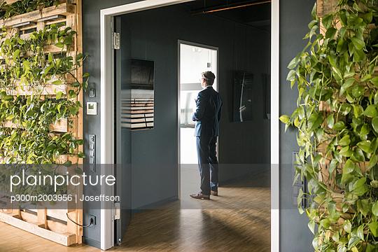 Mature businessman standing at a door in green office - p300m2003956 von Joseffson