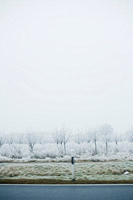 Winterlandschaft mit Landstraße - p2686953 von Christof Mattes