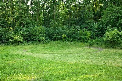 Circular path in grass at zoo - p9241528 by Chris Wert