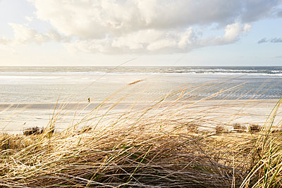 Looking out on the North Sea from the dunes - p1203m1578225 by Bernd Schumacher