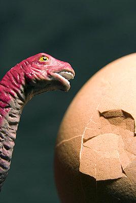 Dinosaur - p5640064 by Dona