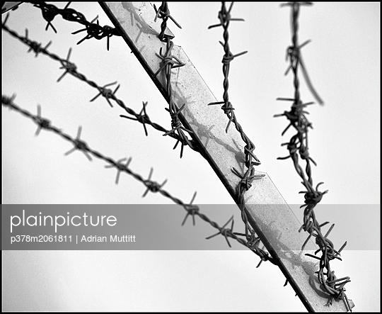 p378m2061811 von Adrian Muttitt