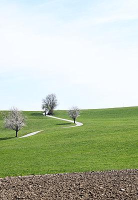 Landscape - p1229m2273165 by noa-mar