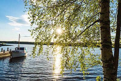 p312m1521927 von Mikael Svensson