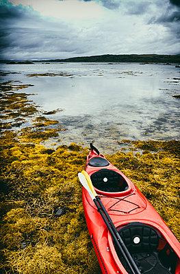 Canoe on stony beach seascape coast seaweed nobody landscape - p609m2066461 by WALSH photography
