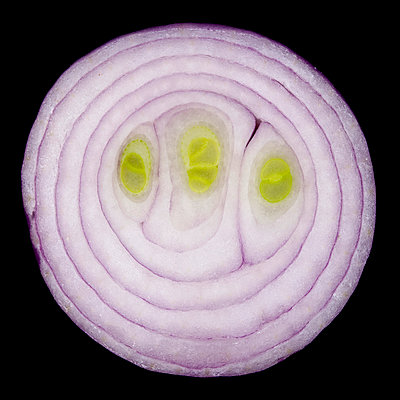Red onion - p852m1056132 by Astrid Schulz