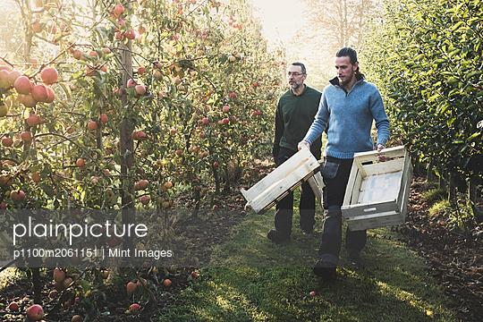 p1100m2061151 von Mint Images