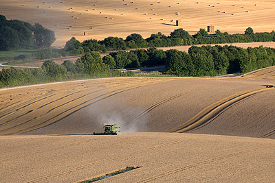 Harvesting wheat with combine harvester, near Winchester, Hampshire, England, United Kingdom, Europe - p871m1506659 by Stuart Black