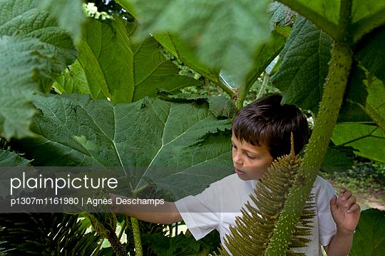 p1307m1161980 von Agnès Deschamps