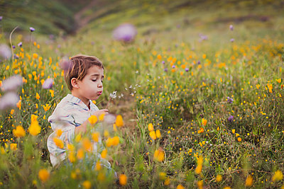 Young boy blowing a dandelion on a field of wild flowers. - p1166m2246618 by Cavan Images
