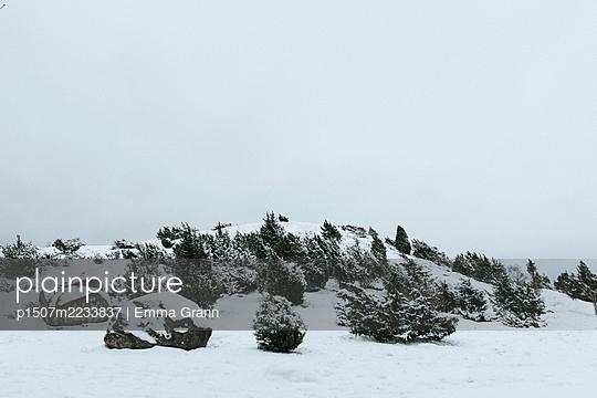 Sweden, Winter landscape - p1507m2233837 by Emma Grann