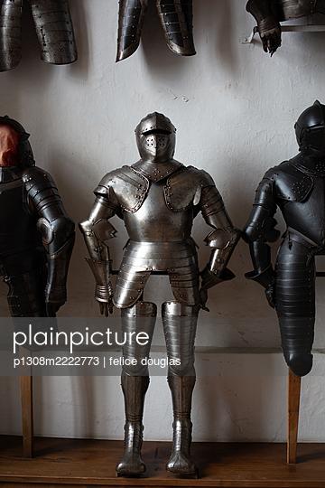Ritterrüstung - p1308m2222773 von felice douglas