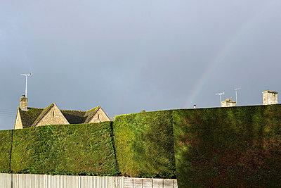 Häuser hinter der Hecke - p1057m881353 von Stephen Shepherd