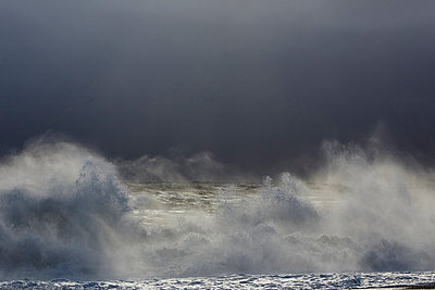 Stormy beach in winter - p719m1123215 by Rudi Sebastian