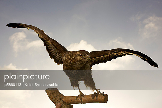 Departure - p5860113 by Kniel Synnatzschke
