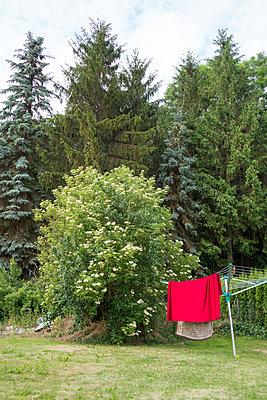 rotes Tuch am Waldrand - p1079m1184970 von Ulrich Mertens