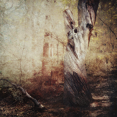A Quiet Farewell - p1633m2208920 by Bernd Webler