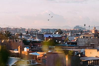 Morocco, Rooftops, Marrakesh - p1253m2152620 by Joseph Fox