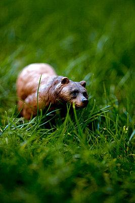 Bear hiding in the grass - p4451367 by Marie Docher