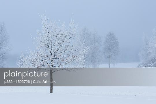 p352m1523726 von Calle Artmark
