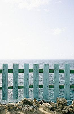 Fence - p0450696 by Jasmin Sander