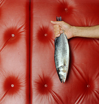 Frischer Fisch - p4470145 von Anja Lubitz