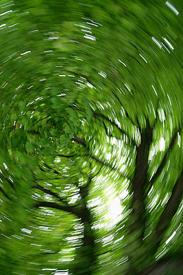 Turning and spinning - p8670085 by Thomas Degen