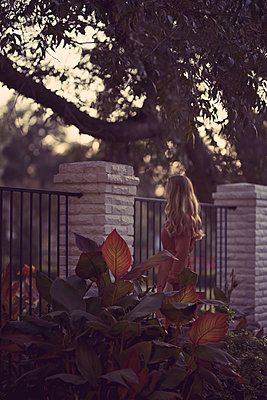 Woman Standing in Bushes Looking Over Fence - p1617m2223554 by Barb McKinney