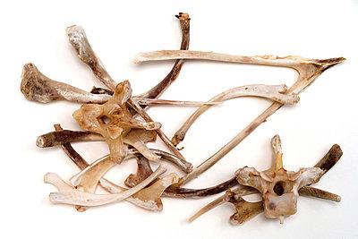 Geflügelknochen - p2650844 von Oote Boe
