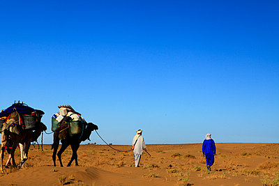 Trough the desert - p503m2135188 by Fabrice Arfaras