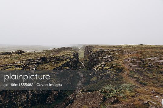 p1166m1555482 von Cavan Images