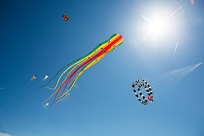Octopus-shaped and other kites in the sky - p300m1549727 by Jan Tepass