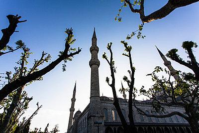 Istanbul - p488m800554 by Bias