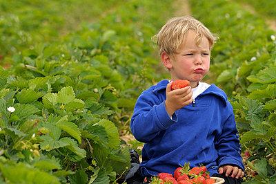 Chewing - p6050100 by H. Kühbauch