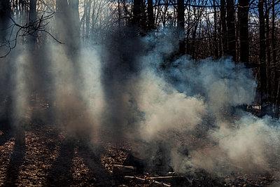 Smoke - p1296m1527043 by Jean-François Brière