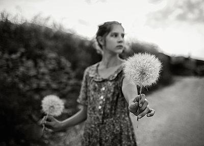 Girl Holding Dandelions - p1503m2015904 by Deb Schwedhelm
