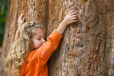 Little girl touching tree trunk - p62322004f by Eric Audras