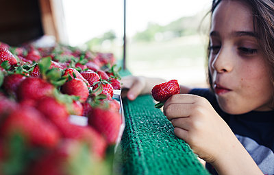 Close-up of boy eating strawberries at market stall - p1166m1485258 by Cavan Images