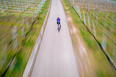 Active young man riding bicycle on road - p300m2282494 by Stefan Schurr