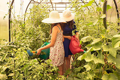 Two females wearing sun hats, using watering can to water plants in greenhouse - p429m1174925 by Aliyev Alexei Sergeevich