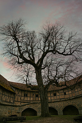 Rothenburg ob der Tauber - p1038m1064363 by BlueHouseProject