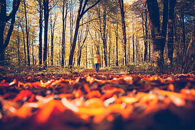 Woman standing in a forest in the autumn - p1690m2281265 by Marie Carr