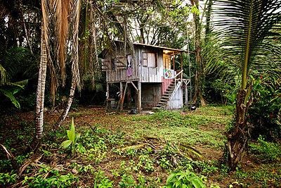 Caribbean hut - p1980323 by David Breun