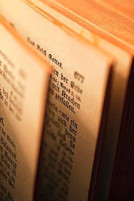 Die Bibel - p3300239 von Harald Braun