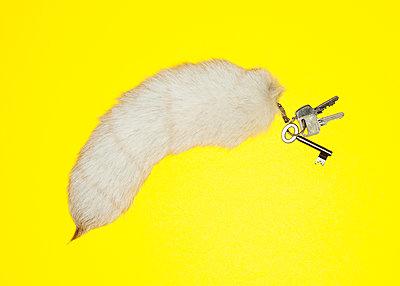Fox tail keychain pendant - p1008m2178546 by Valerie Schmidt