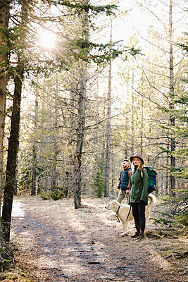 Couple with dog hiking in woods - p1192m2094028 by Hero Images