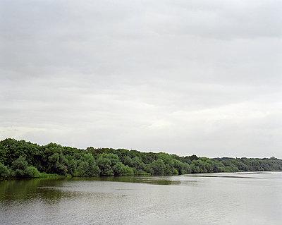 Bäume am Flussufer - p1409m1466067 von margaret dearing
