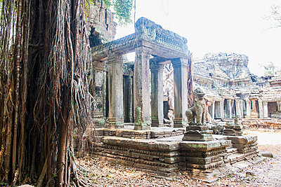 Entrance to Preah Khan temple close to Angkor Wat, Siem Reap, Cambodia - p429m1140186 by Henn Photography