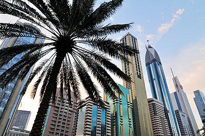 Dubai - p715m694505 by Marina Biederbick