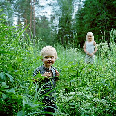 Children in forest - p5282666 by Johan Willner